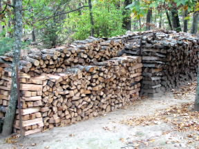 Our woodpile.  October 21, 2008.