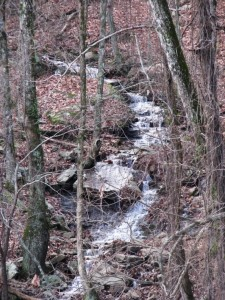 Water tumbling down the escarpment near Grandview, Tennessee.