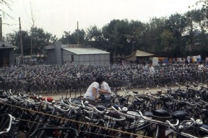 Bicycles at Tianjin zoo.  Summer, 1987.