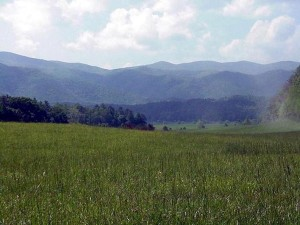 Cades Cove, Great Smoky Mountains National Park.  May, 2001.