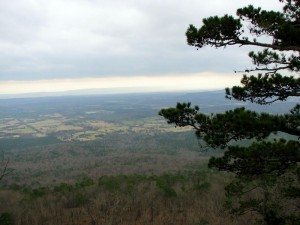The view from 'our' cabin on Mt. Nebo.  March 10, 2009.