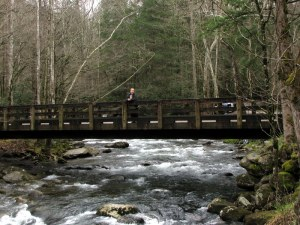 Betsy on a bridge over the Little Pigeon River.  March 28, 2009.