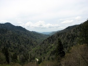 The Smoky Mountains on Newfound Gap Road.  May 10, 2009.