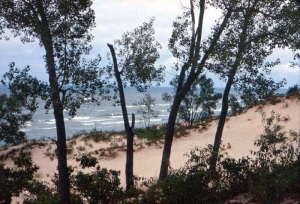 The shore at Indiana Dunes State Park.