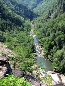 The southern end of Tallulah Gorge.  Oceana Falls is in the foreground.