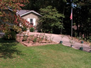 Our front yard, Fairfield Glade, Tennessee.  September 13, 2009.