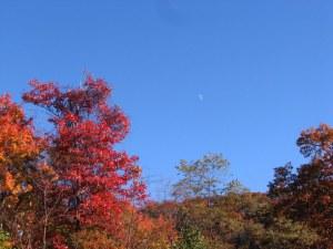 AutumnSky09102501