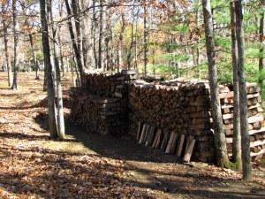 Woodpile01110201