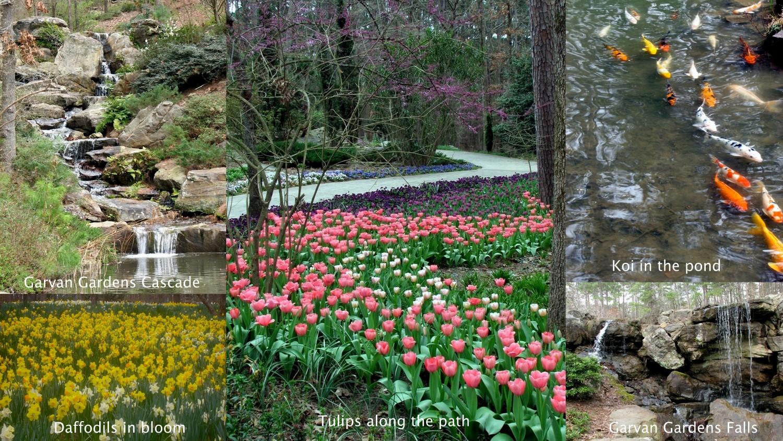 Down Memory Lane Garvan Gardens Senior Moments