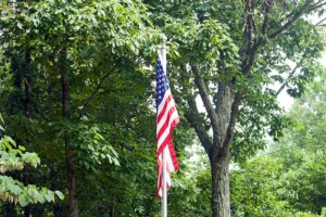The flag in our front yard, Fairfield Glade, Tennessee.  June 13, 2010.