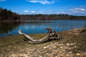 Dierks Lake, Dierks, Arkansas.  February 27, 2012.