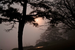 A foggy sunset from Mount Nebo, Arkansas.  March 31, 2011.