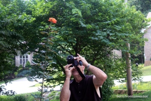 George getting a picture of our About Face rose.  July 21, 2013.  (Photo by Betsy)