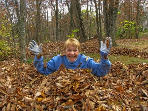 Betsy having fun in the leaves, Fairfield Glade, Tennessee.  November 9, 2013.