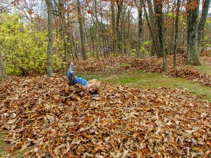 Losing my Beautiful Bride in a pile of leaves.  November 9, 2013.