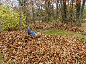 Losing my Beautiful Bride in a pile of leaves.  November 9, 2013.