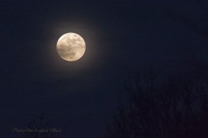 Full moon over Fairfield Glade, Tennessee.  December 16, 2013.