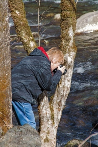 Betsy getting a picture of Middle Prong Little River, Great Smoky Mountains, Tennessee.  January 20, 2013.