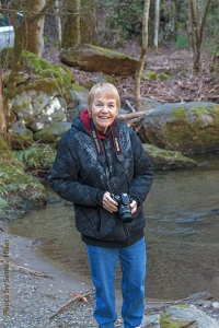 Betsy along Tremont Road, Smoky Mountains, Tennessee.  January 20, 2014.