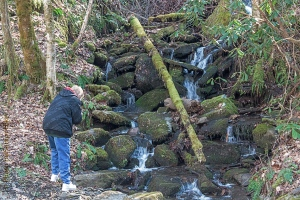 Betsy photographing Stillhouse Hollow Falls.  January 20, 2014.