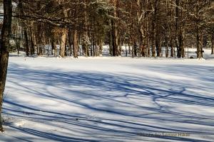 Shadows and snow on the fairway, Fairfield Glade, Tennessee.  January 6, 2014.