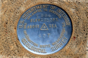 Geological marker on Mt. Magazine.  February 26, 2014.