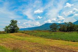 The Sequatchie Valley, Dunlap, Tennessee.  August 16, 2014.