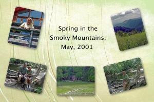 2001 -- Smokies Spring