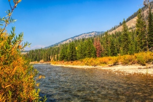 The Hoback River, Wyoming.  September 18, 2012.
