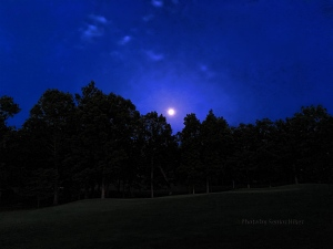 A nearly full moon greeted us as we left the house one early morning. May 23, 2016.