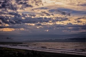beachmorning16120103